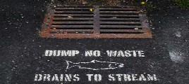 fish and storm drain STENCIL2